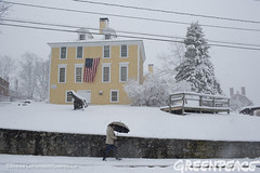 New Hampshire Primary Snow (Greenpeace USA 2015) Tags: usa democracy newhampshire exeter bernie vote republican democrat sanders keepitintheground