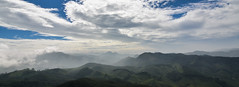 From the Rajamali National park. (parmeetkohli) Tags: mist fish mountains coffee trek peace tea country lakes culture kerala jungle gods own toddy kathakali