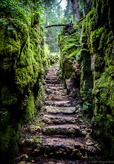 Stairs to the Woods (Alek81) Tags: stone stair italia estate it agosto staircase forra montagna trentino lupo serrada 2015 wolfsschlucht trentinoaltoadige terragnolo forradellupo adm admphotography alessandrodimatteo