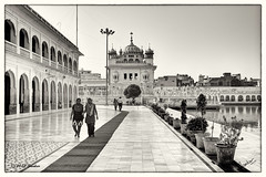 Tarn Taran Sahib (msankar4) Tags: india holy sikh gurdwara punjab amritsar trance goldentemple guru waheguru palki hymns holybook granth harmandirsahib sarover nihang tarntaran tarntaransahib sanctumsantorum granthsahib