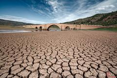 puente ariza / ariza bridge (Miguel Angel Avi) Tags: bridge espaa ro puente spain andalucia andalusia sequa ubeda renacimiento vandelvira guadalimar puenteariza