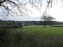 Coundon Wedge, Brownshill Green. 10th Feb 2016. P1280384 (Imagine Bill) Tags: coventry coundonwedge brownshillgreen coventrywestmidlands ancientarden