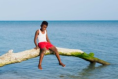 Matarle el ojo al Sol (Races annimas) Tags: costa arbol atardecer mar colombia pescador caribe pescar pelcano islafuerte arbolquecamina