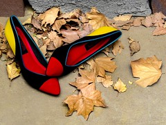 Some Of Her Favorite Things (Work...It) Tags: stilllife leaves fashion shoes highheels footwear womensshoes