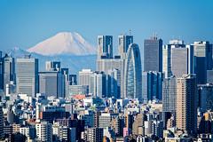Mount Fuji behind Shinjuku (balbo42) Tags: snow tower japan landscape tokyo shinjuku cityscape fuji center mount deck observatory civic fujifilm bunkyo japon teleconverter cocoon 2016 xt1 xf50140mmf28