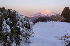 Mt.Fuji (Masayuki Nozaki) Tags: mountain japan canon landscape fujisan  mtfuji snowscape 6d