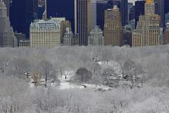 Plaza Hotel & central park in white blanket (dannydalypix) Tags: nyc newyorkcity snow centralpark manhattan plazahotel gothamist gotham