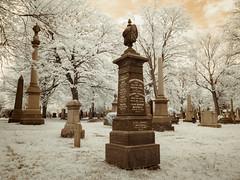 St. James Cemetery, Toronto (Adventures in Infrared) (Torsten Reimer) Tags: ca trees friedhof toronto ontario canada cemetery graveyard grass memorial infrared northamerica infrarot stjamescemetery olympusepl5