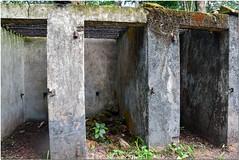 Bagne des Annamites (Montsinery) (gillyan9) Tags: cellule guyane bagne annamites montsinery