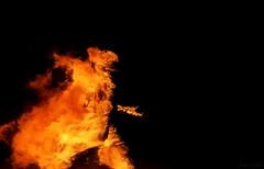 Photo (plaincut) Tags: music man fire robot punk loop it burning burn movies wtf daft electroma