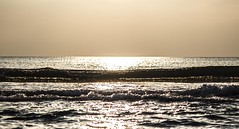 L onda Lunga (Fabio75Photo) Tags: light sunset water tramonto sale acqua luce onda schiuma vivido bagnato
