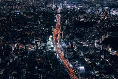 DSC01529 (michaelorchun) Tags: above building japan landscape tokyo cityscape nightscape sony jp tokyotower roppongihills