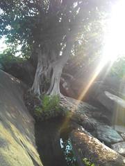 Sunlit source (kavya c) Tags: morning sunlight water clean source visakhapatnam