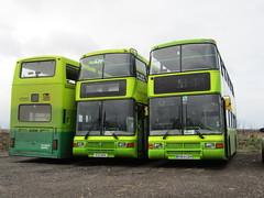 P904 RYO - R313 WVR - R363 LGH (markkirk85) Tags: new bus london buses volvo general ryo northern counties merseyside sunfun olympian 0313 lgh wvr earith r313 61998 r363 nv104 p904 r313wvr p904ryo r363lgh nv163 21997 1219997