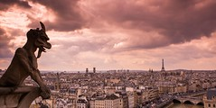 Paris view from Notre Dame towers (Sharada Prasad) Tags: sky paris france tower clouds dusk eiffel chimera hdr gorgoyle