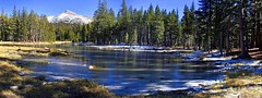 Partially Frozen Lake near Tuolumne Meadows Yosemite Ca (ronc316) Tags: blue trees winter panorama mountain lake snow green ice nature water pine forest landscape frozen pond oak woods natural snowy altitude pass meadow peak ground sierra shade yosemite granite fir sierras icy pinetrees tuolumne snowcovered highaltitude califromia