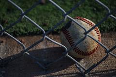 The Baseball (Beth Reynolds) Tags: summer game hot field fence ball baseball highschool pitch seams