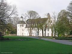 Schloss Borbeck (Jorbasa) Tags: plant tree germany essen hessen pflanze geotag ruhrgebiet baum nordrheinwestfalen frhling magnolie wetterau wasserschloss deutschand schlossborbeck jorbasa