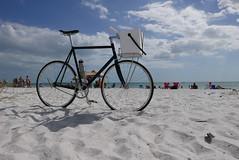 IMG_7504 (pilisiecki) Tags: cycling stainless bikerack bespoke porteur lisiecki pilisiecki