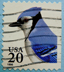 great stamp USA 20c Blue jay (Cyanocitta cristata, Blauhher, Geai bleu, arrendajo azul, Gaio-azul, , Kk szajk,  , , Blskrika, Blauwe gaai) United States of America timbre tats-Unis u.s. postage    pullar ABD   (stampolina) Tags: blue usa bird azul postes unitedstates blu stamps bluejay stamp bleu ave states blau azzurro niebieski tem oiseau postzegel vogel pjaro selo uccello cyanocittacristata bolli ptak sello sellos  frimrken   francobollo selos timbres frimrker  francobolli bollo  zegels  zegel znaczki markica  geaibleu  perangko frimerker pullar  blauhher     blyegek  antspaudai raztka