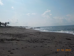 DSCN1851 (petersimpson117) Tags: seseh pererenan