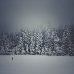 winter fog (Bhalalhaika) Tags: trees winter lake snow man cold nature oslo norway outdoors person frozen woods forrest