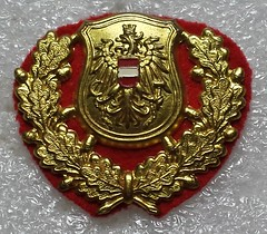 Austria Police (old) (Sin_15) Tags: austria police cap badge law enforcement insignia beret