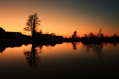 After sunset (M a u r i c e) Tags: trees sunset nature water netherlands mirror pond silhouettes polder efs1022mm