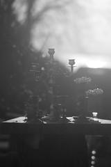 Ljus (tusenord) Tags: sunset blackandwhite bw monochrome garden candles decoration ljus svartvitt fotosondag fs160410