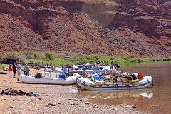 Lee's Ferry (oxfordblues84) Tags: arizona people reflection water reflections river tourists adventure rafting shore coloradoriver rafters grandcanyonnationalpark raftingtrip coconinocounty roadscholar roadscholartour roadscholartrip grandcanyonnationalparkexploringthenorthandsouthrims roadscholarorg