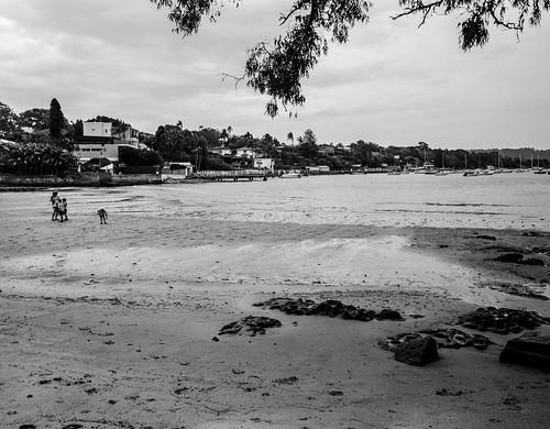 Vaucluse Bay