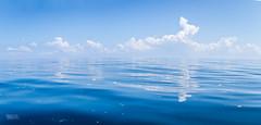 Calm Ocean Blues (Daran Kandasamy) Tags: ocean travel blue sea sky panorama reflection nature water clouds canon landscape asia horizon wanderlust adventure ripples srilanka cloudscape cloudporn trincomalee waterscape trinco canon7d
