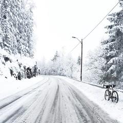 #oslo #norway #colossi #portlanddesignworks #steelisreal #winter #wintercycling #vikingbiking #oslosykkel #sykkelioslo #colossi #cyclocross #cx #norge #cycling #bike #bikeporn #steelisreal #portlanddesignworks #chrisking #schwalbe #ritchey #novatec #bike (Anders Hansen) Tags: square squareformat iphoneography instagramapp uploaded:by=instagram