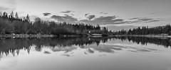 dog river dusk (mando-damon) Tags: nature reflections evening dusk rivers dogriver
