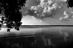 What is it about a beautiful sunny afternoon, with the birds singing and the wind rustling through the leaves, that makes you want to get drunk? - Deep Thoughts with Jack Handey (haint_blue) Tags: light sky blackandwhite bw sun reflection tree nature water monochrome sunshine silhouette clouds canon river mississippi grey shadows natural gray ripples rippled cloudporn waterscape canoneos70d