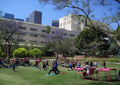 More Noontime Yoga (Robb Wilson) Tags: yoga losangeles lunchtime downtownla stretching tallbuildings grandpark
