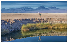 Atacama Desert, Volcanoes & Bikini (gemini@2011) Tags: chile volcano sanpedrodeatacama atacamadesert