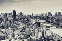 Tokyo skyline from the Asahi Super Dry Hall (Davide Seddio) Tags: city japan skyline architecture tokyo asia asahi fareast eastasia sumidariver asahisuperdryhall