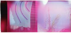 3/366 A Better Place A Better Time (T.Blue) Tags: light film holga burn portra leaks