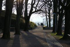 walkers on a warm december day (1) (BZK2011) Tags: leica december walk dezember freiburg sonntag spaziergang 2015 schneswetter freiburgimbreisgau vlux spaziergnger schlosberg