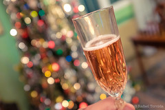 Happy 2016 everyone! (imageneer) Tags: christmas bokeh toast champagne newyear christmaslights 2016