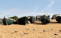 oualidia boats (kexi) Tags: africa seagulls beach birds canon boats march sand morocco maroc 2015 maroko instantfave oualidia