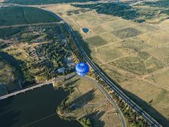 CBR-Ballooning-Zoo and Arboretum (mezuni) Tags: aviation australia hobby transportation hotairballoon canberra hobbies activity ballooning act activities passtime oceania australiancapitalterritory balloonaloftcbr