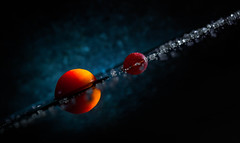 A tomato earth and a grape moon in a vegetable universe (simonpe86) Tags: light red stilllife orange cloud macro reflection contrast tomato licht stillleben vegetable saturn universe makro kontrast spiegelung tomate universum flickrchallengegroup flickrchallengewinner macromonday