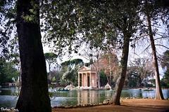 (PierluigiPeace) Tags: autumn italy cloud lake rome roma tree leave nature water nikon italia natura villa borghese esculapio