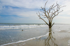 Botany Bay, SC (Jon Ariel) Tags: beach bay south carolina botany