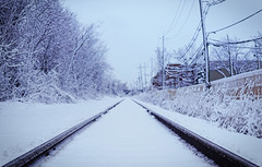 Icey track (maamounmohammed) Tags: winter snow beautiful train photography photographer trails sigma blizzard 30mm sigmalens sonya6000