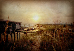 Cape Hatteras Shoreline (Chris C. Crowley- catching up on editing- be back ) Tags: ocean sea people seascape building beach dock path dunes scenic seaoats capehatterasnorthcarolina capehatterasshoreline
