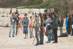 DSC_3933 (Streamer - צלם ים) Tags: ladies girls men surf waves surfer seat netanya small surfing event pro qs magnus uri streamer ים תחרות נתניה גמר בנות חצי גלישה גברים נשים wsl גלים גולשים בנים מקצוענים גולשות ביצועים מקצה israelצלם