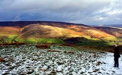 4 (Nicola Dell Photography) Tags: uk winter nature birds garden photography landscapes nicola wildlife derbyshire sheffield dell tor mam walkers castleton 2016 2015 s12 hackenthorpe
